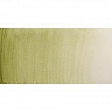 Winsor & Newton : Professional Watercolor : 5ml : Terre Verte (Yellow Shade)