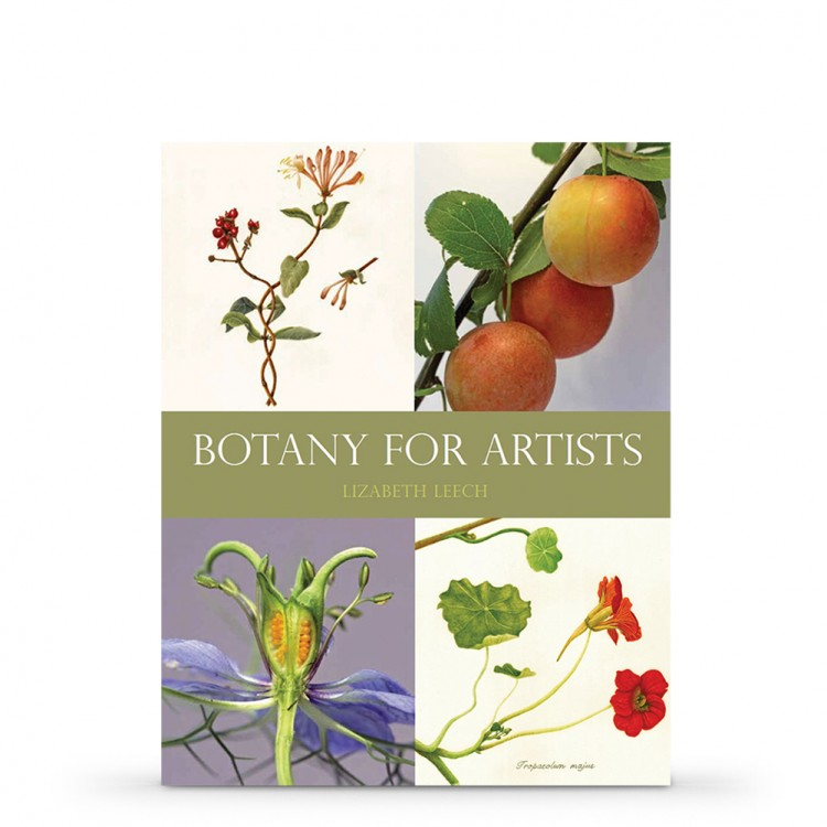 Botany for Artists : Book by Lizabeth Leech