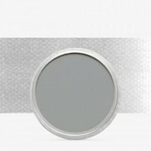 PanPastel : Neutral Grey : Tint 5