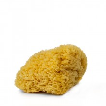 Handover : Natural Sea Sponge : Large Approx. 6 - 6.5 in