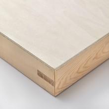 Jacksons Akademie Holzwand 24x24in: 50mm tief