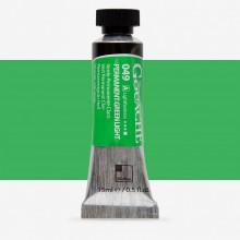 ShinHan : Professional Designers Gouache : 15ml : Permanent Green Light