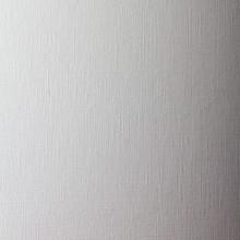 Canson Figueras: Canvas-Textured Paper für Öl (und Acryl) 50 x 65: 290gsm