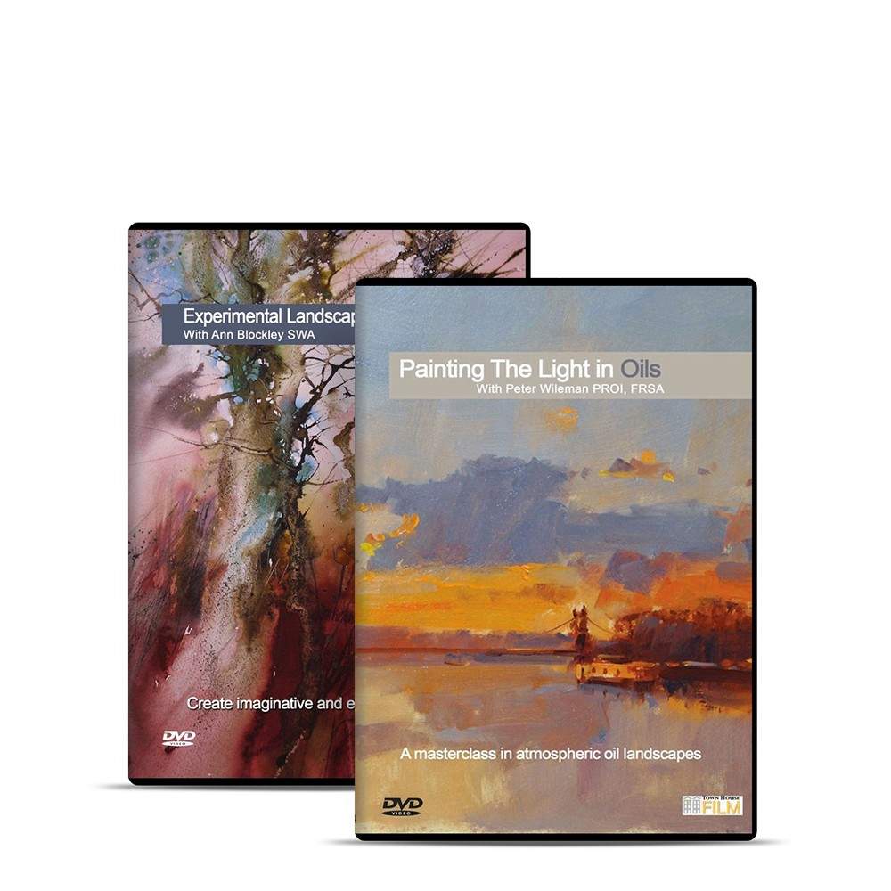 Townhouse : DVD : ExParimental Paysages In Watercolour avec Ann Blocley SWA