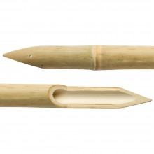 Peinture chinoise : Bamboo Pen : médium était BP02