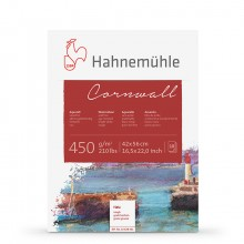 Hahnemuhle :Cornwall : Bloc de Papier : 450gsm : 210lb : 42x56cm : 10 Feuilles : Grain Torchon