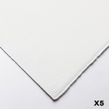 Saunders Waterford : 56x76cm :  300g : High White : 5 Feuilles : Grain Fin