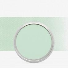 PanPastel :PanPastel: Permanent Green Tint : Teinte 8