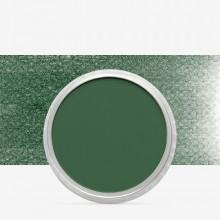 PanPastel :PanPastel: Chromium Oxide Green Shade : Teinte 3