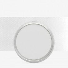 PanPastel :PanPastel: Neutral Grey Tint : Teinte 8